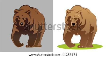 Illustration of a bear - stock vector