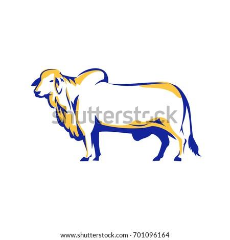 Illustration Brahman Bull Side View On Stock Vector 701096164