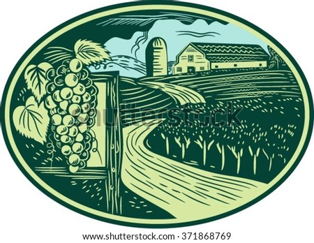 Illustration of a bunch of grapes on vine with leaves with winding road in vineyard or winery and barn farmhouse in background set inside oval shape done in retro woodcut style.  - stock vector