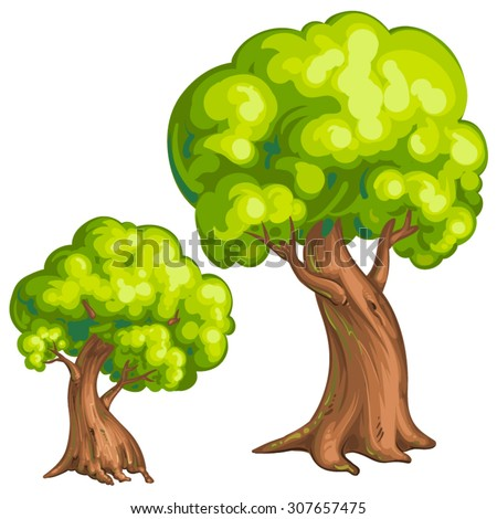 Illustration of a closeup tree - stock vector