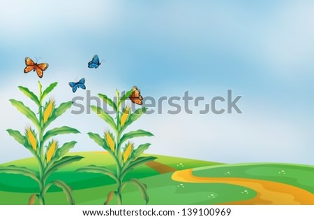 Illustration of a corn field at the hill with butterflies - stock vector