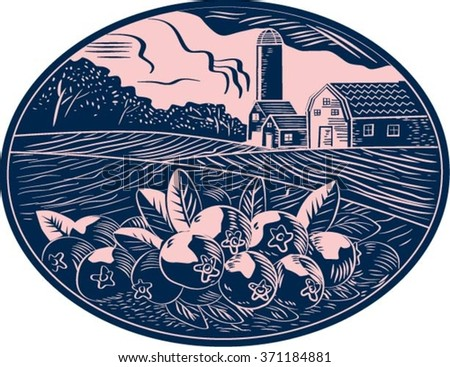 Illustration of a cranberry fruit farm with farmhouse barn and silo in the background done in retro woodcut style.  - stock vector