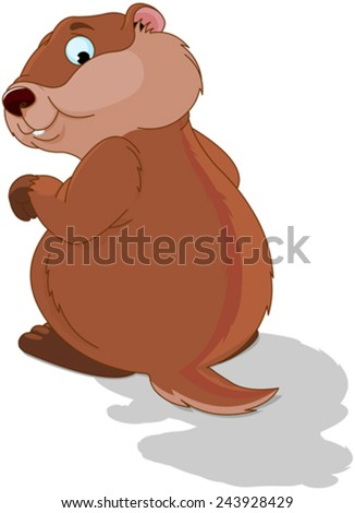 Illustration of a cute groundhog - stock vector