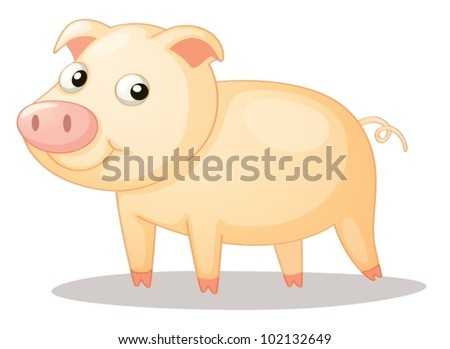 Illustration of a cute piggy