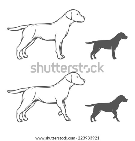 Illustration of a dog in different poses isolated on white background - stock vector