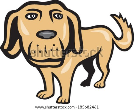 Illustration of a golden retriever dog with big head looking towards viewer done in cartoon style on isolated background. - stock vector