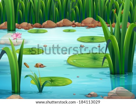 Illustration of a pond with green plants - stock vector