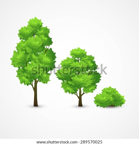 Illustration of a set of different trees. Vector illustration EPS 10 - stock vector