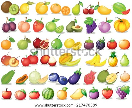 Illustration of a set of fruit - stock vector