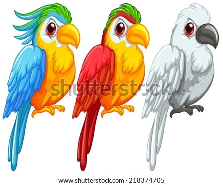 illustration of a set of parrots - stock vector