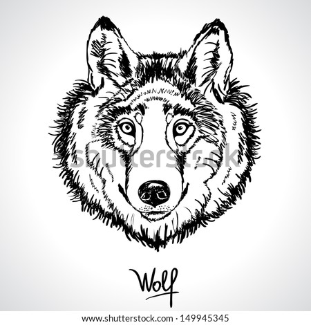 illustration of a silhouette of the head of beautiful wolf - stock vector