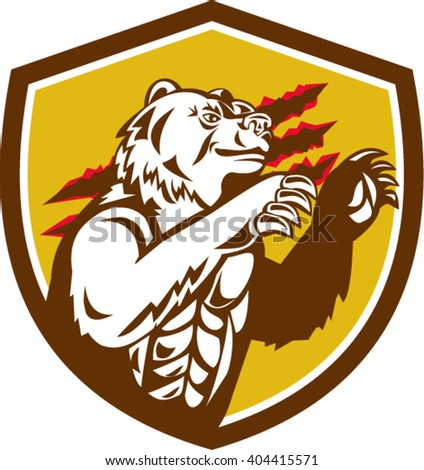 Illustration of a smirking California grizzly North American brown bear his paw raised viewed from the side with claw marks in the background done in retro style set inside crest shield.  - stock vector