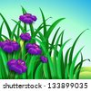 Illustration of a violet flowers in the garden - stock vector