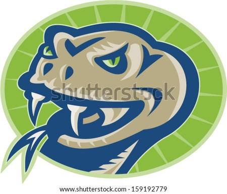 Illustration of a viper snake serpent mascot head facing front on isolated background set inside oval.