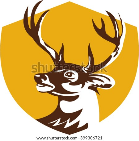 Illustration of a whitetail deer buck stag head looking to the side set inside shield crest done in retro style.  - stock vector