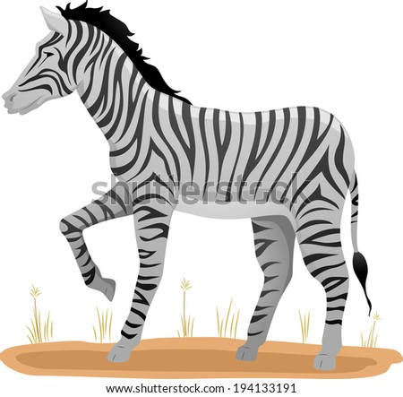 Illustration of a Zebra Standing on a Patch of Dry Grass - stock vector