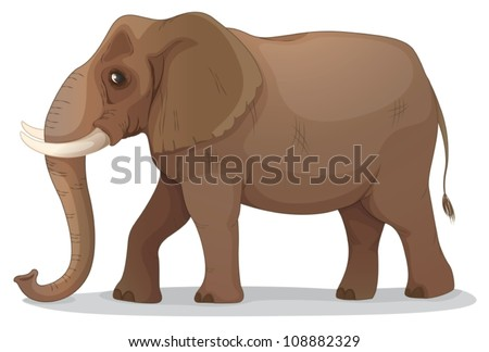 illustration of an elephant on a white background