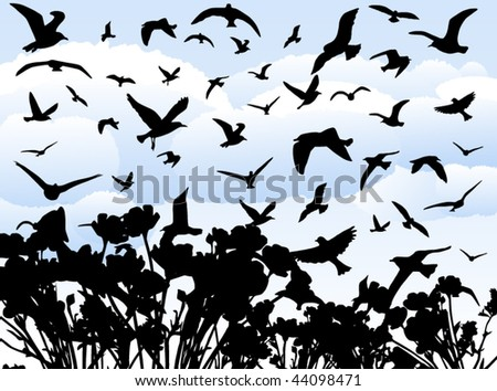 Illustration of birds - stock vector