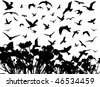 Illustration of birds and flowers - stock vector