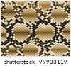 Illustration of brown snake skin-vector - stock vector