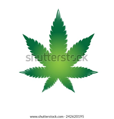 Illustration of cannabis leaf. Vector - stock vector