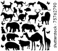 illustration of collection of animal silhouettes on isolated background - stock photo