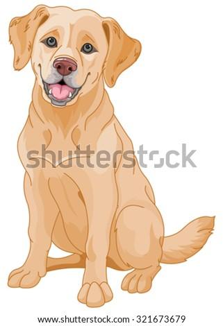 Illustration of cute Golden Retriever dog - stock vector