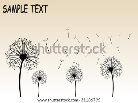 Illustration of dandelions vector design