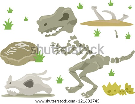 Illustration of Different Kinds of Dinosaur Bones with Grasses - stock vector