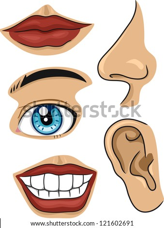 Part Of Face Stock Images Royalty Free Images amp Vectors