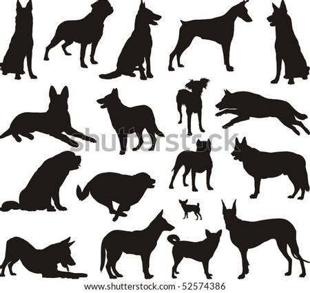 Illustration of dog breeds, black vector - stock vector