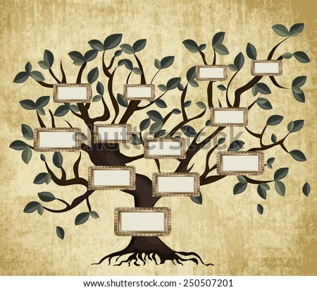 Illustration of family tree on aged paper. Vector eps10. - stock vector
