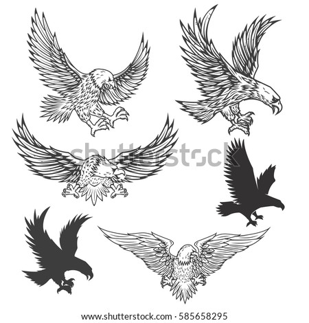 Eagle Stock Images, Royalty-Free Images & Vectors ...