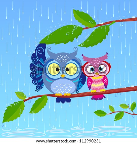 illustration of funny owls sitting on a branch in the rain