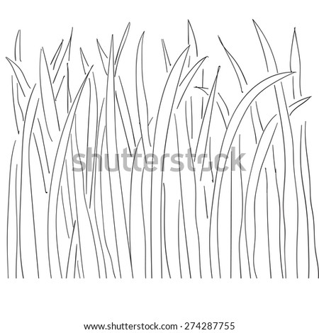 Illustration of grass and plant outlines 2 - stock vector