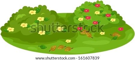 illustration of isolated cute bush on garden  - stock vector