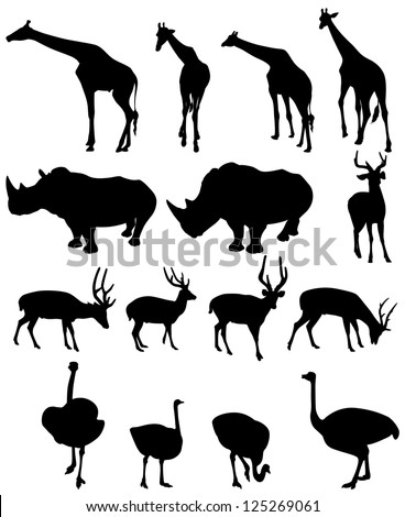 illustration of isolated giraffe,rhinoceros,deer,ostrich .vector