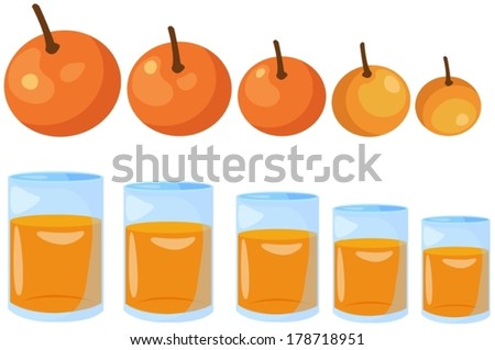 illustration of isolated oranges big to small on white - stock vector