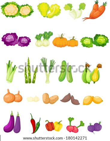 illustration of isolated set of vegetables on white  - stock vector