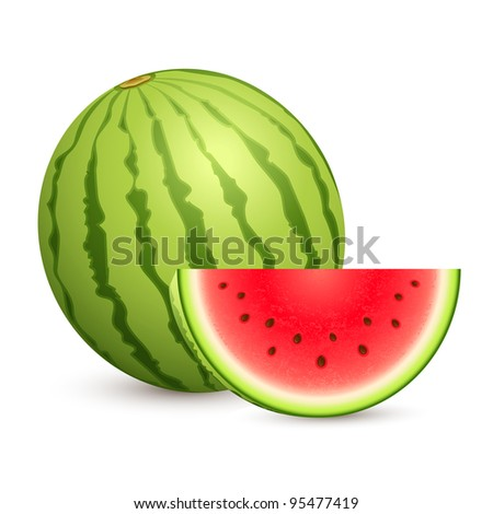 illustration of juicy water melon kept on white isolated background - stock vector