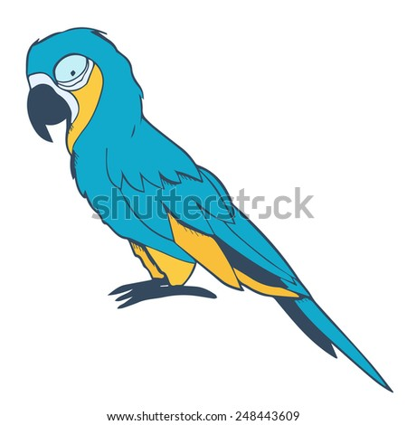 Illustration of macaw - stock vector
