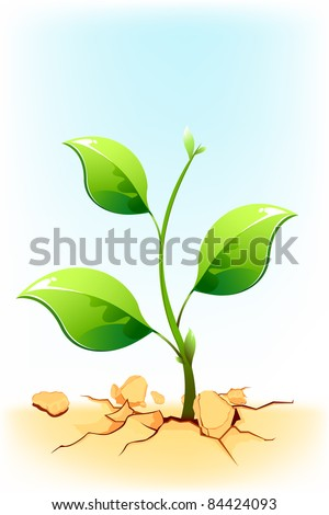 illustration of plant sapling growing on rock soil in drought area - stock vector