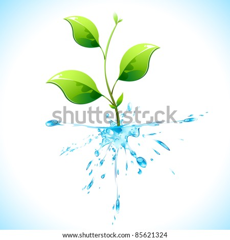 illustration of plant with water root on abstract background - stock vector
