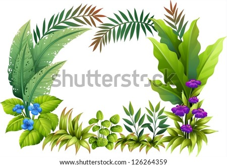 Illustration of plants and flowers on a white background - stock vector