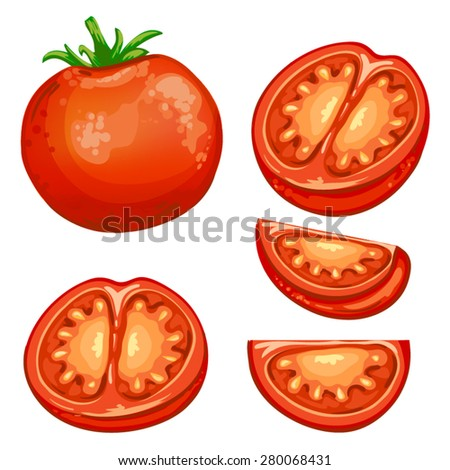 Illustration of red fresh Tomato half  and slices  - stock vector