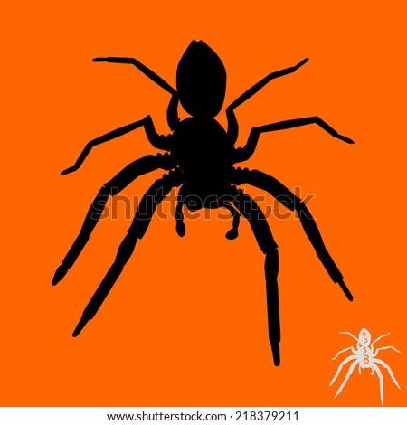 Illustration of spider, spider silhouette, halloween spider - stock vector