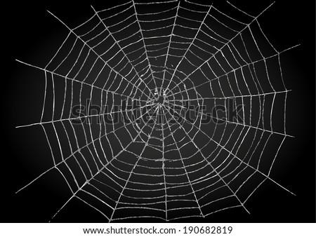 Illustration of spiderweb - stock vector