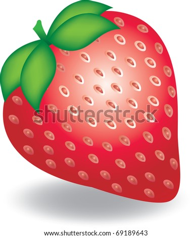 illustration of strawberry - stock vector