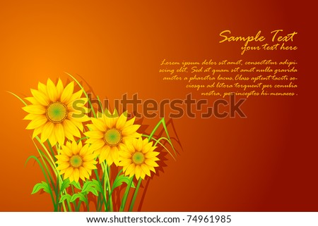 illustration of sunflowers on abstract background - stock vector