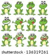 Illustration of the different faces of a frog on a white background - stock photo